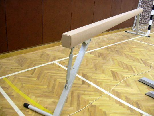 Barna de gimnastica