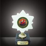 Trofeul tr8 personalizat