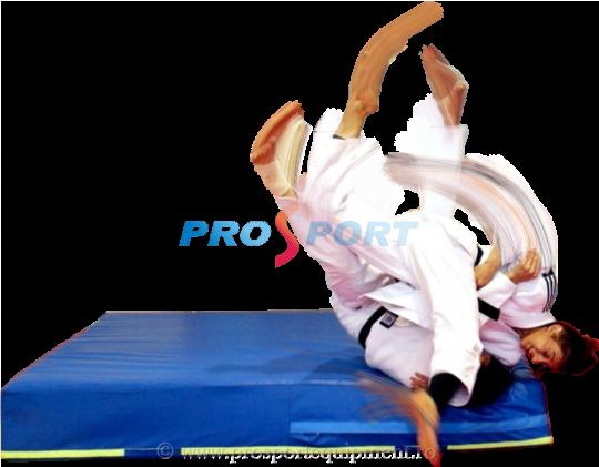 Saltea proiectari cu baza tatami si Larisa Florian executand procedeu de judo