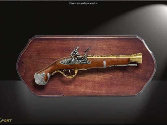 Placheta PL29 cu un pistol sw colectie