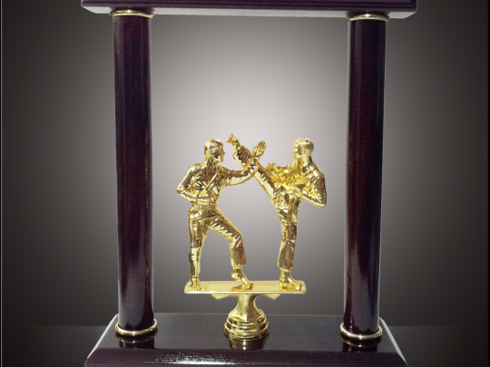 Trofeul TR4 cu statuta de karate