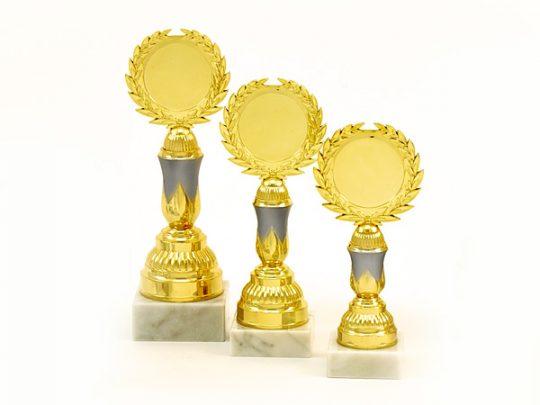 Trofeul PRO6002 in 3 marimi