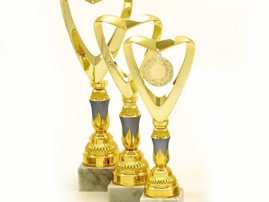 Trofeul PRO6240 in 3 marimi