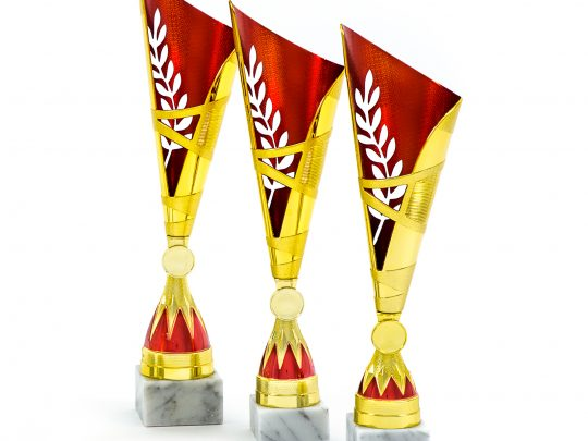 trofeul PRO4901 in 3 marimi