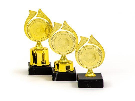 Trofeul PRO6995 in 3 marimi